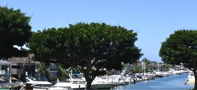 Bayside Restaurant Newport Beach Ca Menu