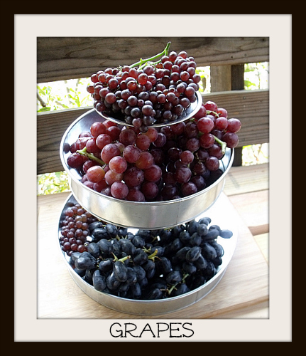Tower of Grapes - Champagne Grapes, Red Muscatos and Black Muscatos