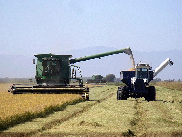 Lundberg Family Farms Tour - Richvale, California