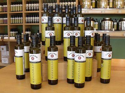 Lucero Olive Oil Tour and Tasting – Corning, California