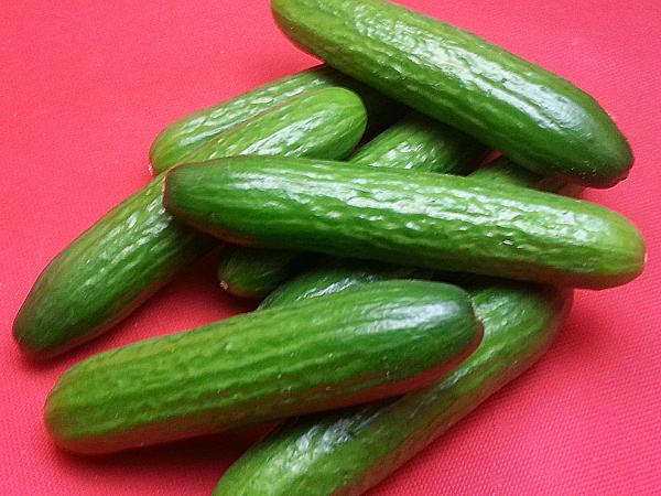 Persian Cucumbers