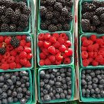 Farmers Park Market – Anaheim Packing District