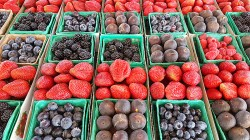 Fresh Berries at SoCo Farmer's Market - Costa Mesa, California