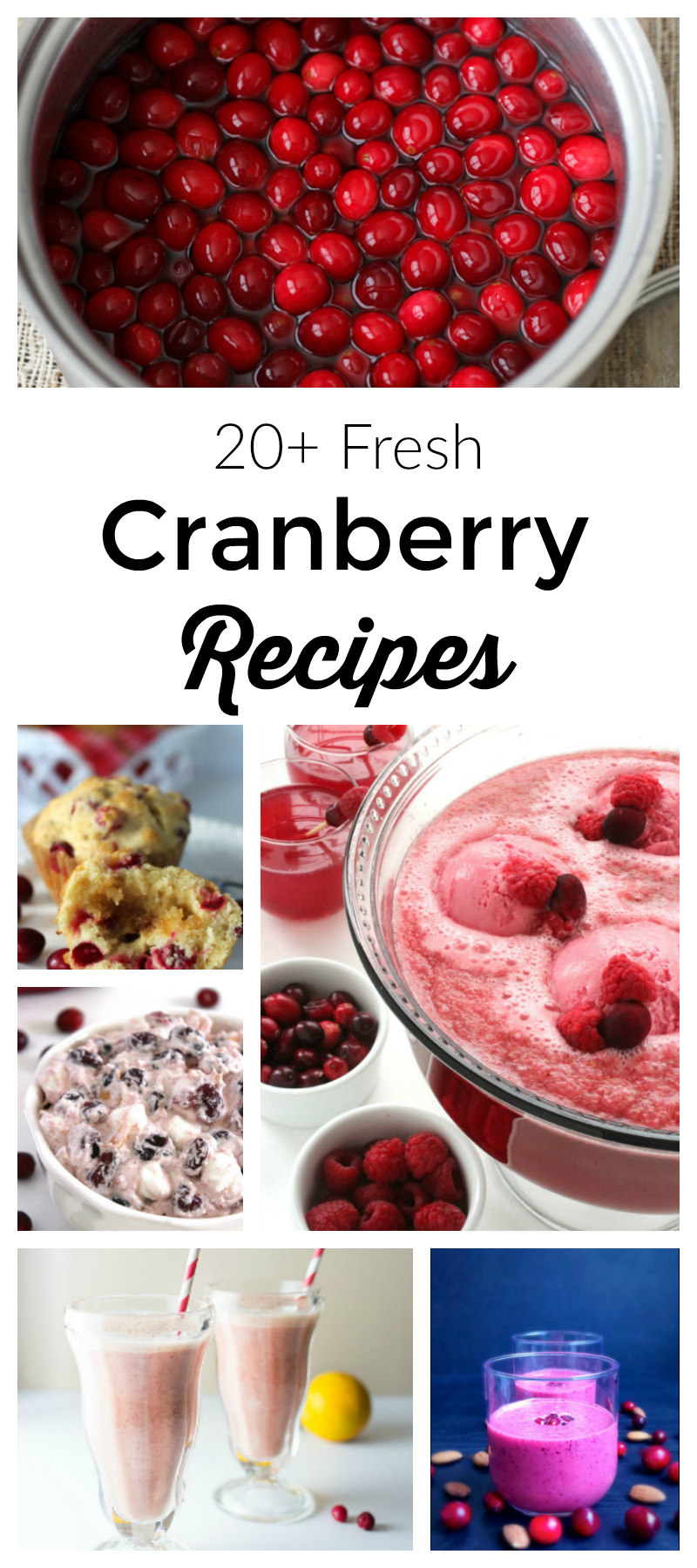 More Than 20 Fresh Cranberry Recipes - Food blogger recipe round up