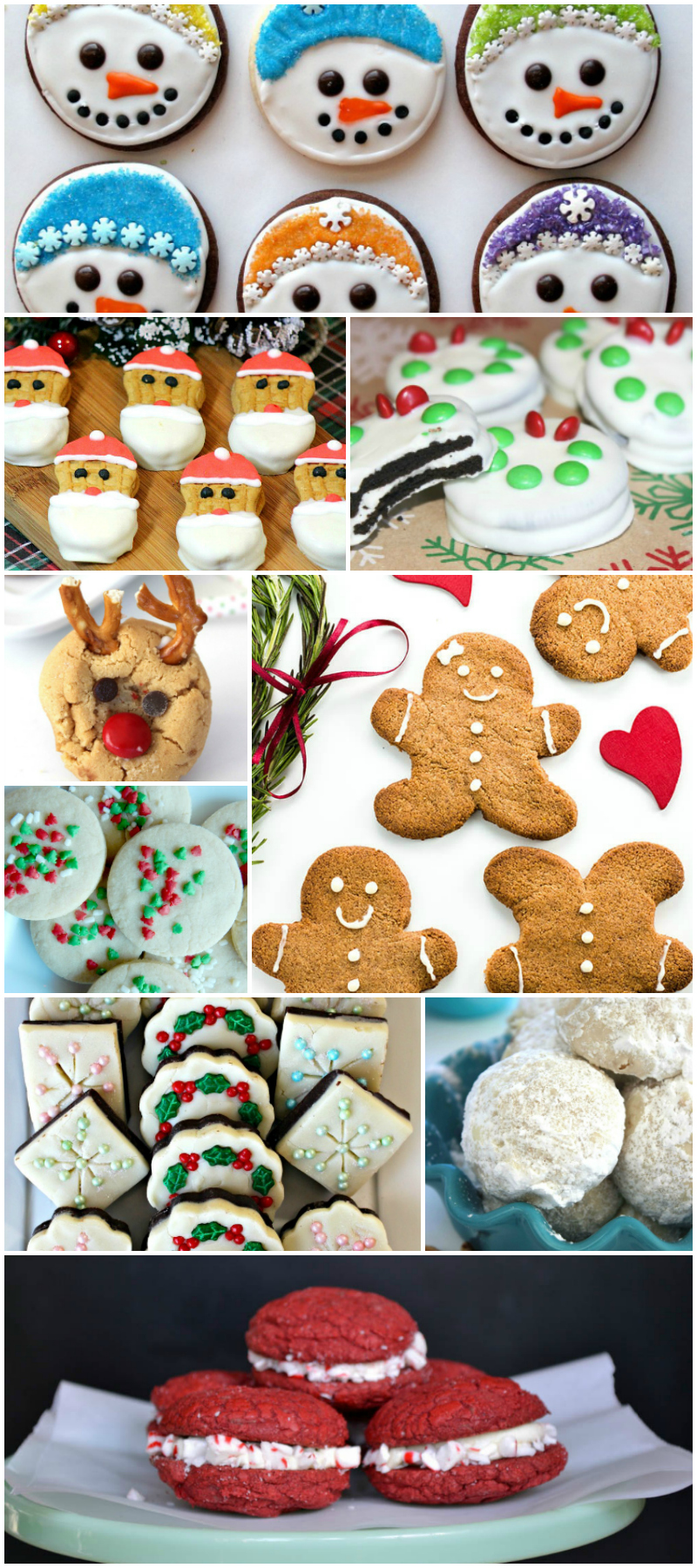 30 Festive Christmas Cookies Recipes - Food Blogger Recipe Round Up