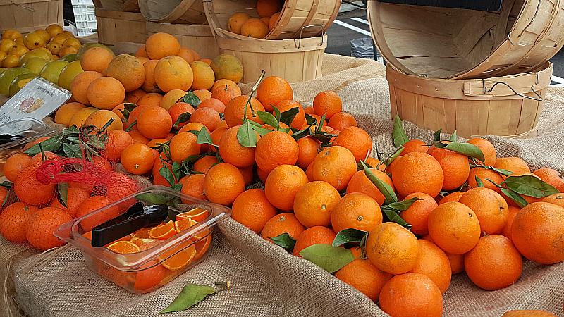 Farmer's Market at Irvine Regional Park