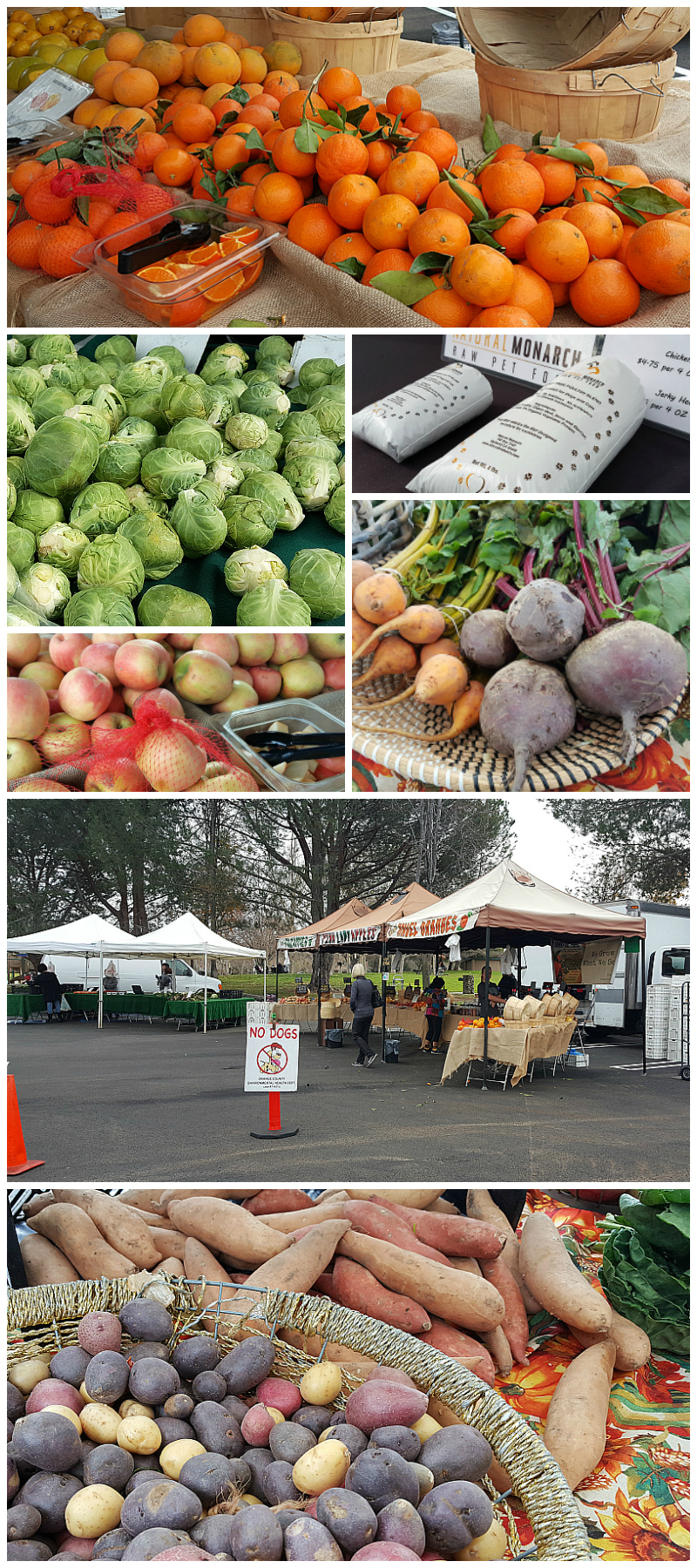 Farmer's Market at Irvine Regional Park in Orange County, California