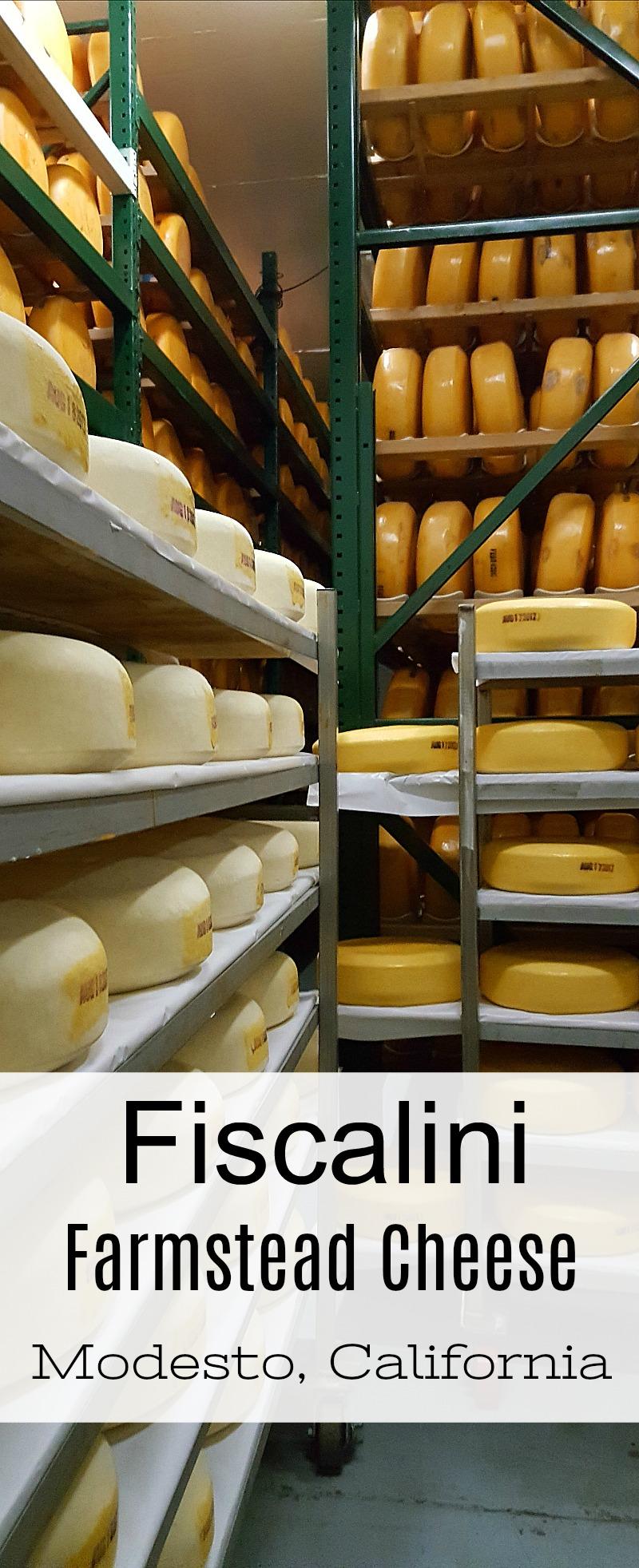 Fiscalini Cheese and Dairy Farm Tour in Modesto, California