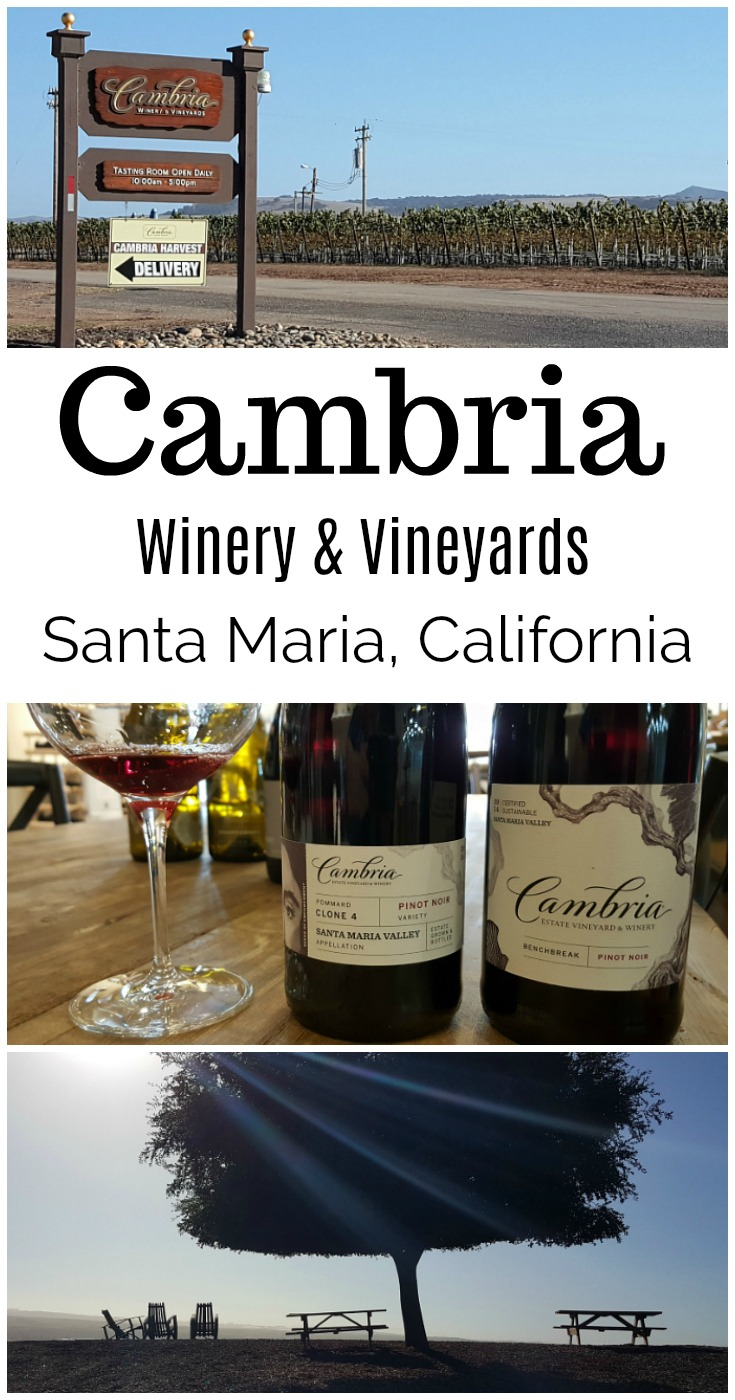 Cambria Winery & Vineyards in Santa Maria, California - Wine Tasting Room