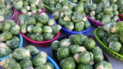 Brussels Sprouts at the Ojai Farmer's Market