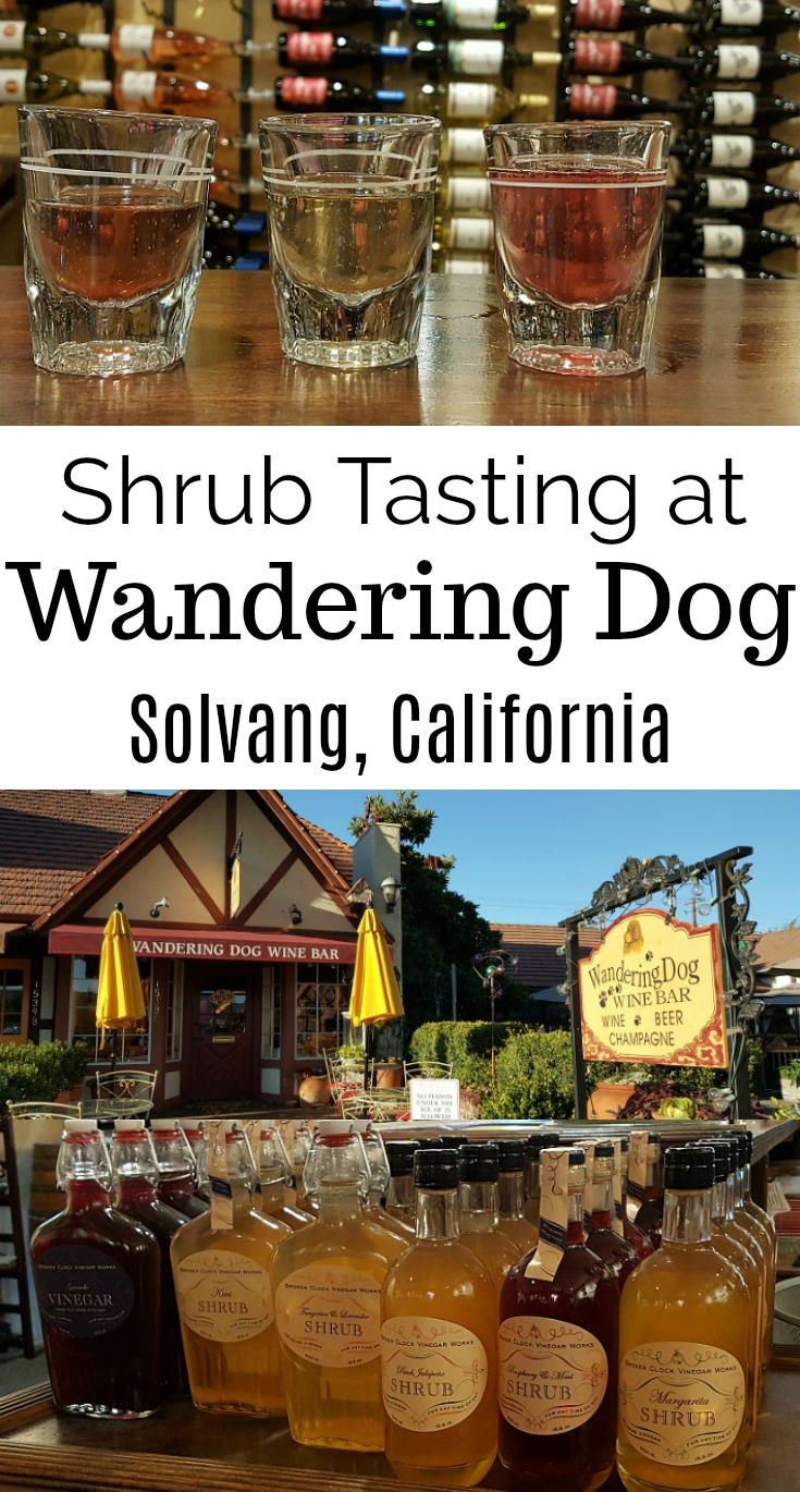 Shrub Tasting at Wandering Dog Wine Bar