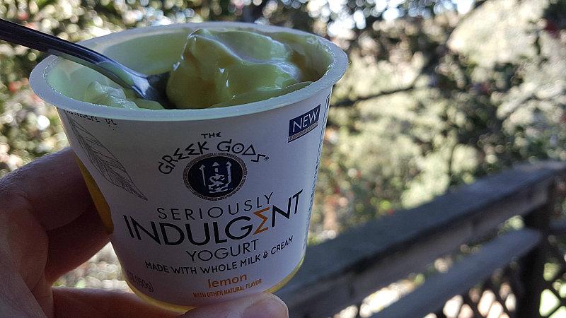 greek gods yogurt indulgent