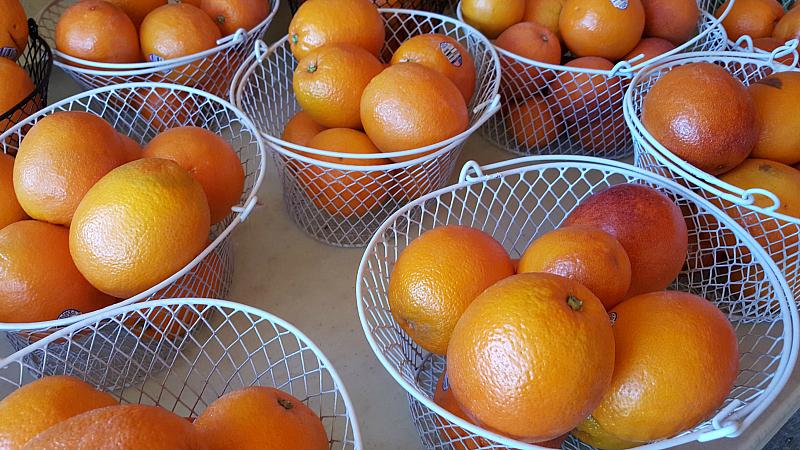 blood oranges citrus