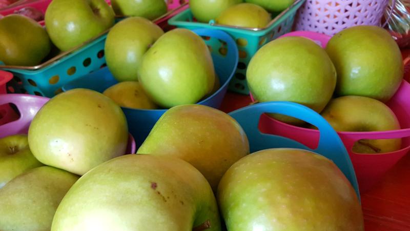 green apples gilroy