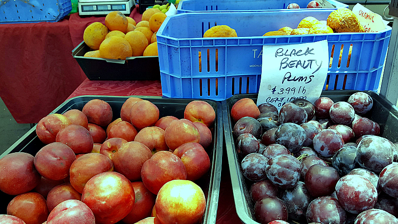 mdr farmers market nectarines plums