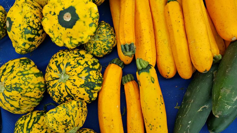 mdr farmers market summer squash