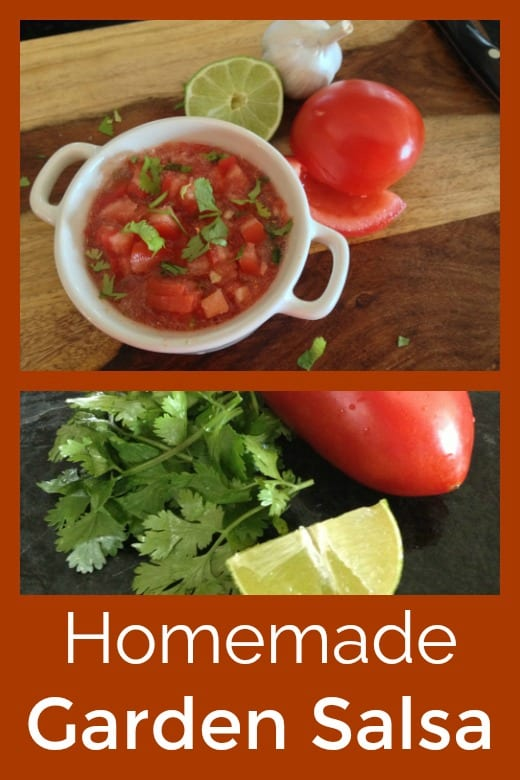 Homemade Garden Salsa Recipe #Salsa #SalsaRecipes #TomatoSalsa