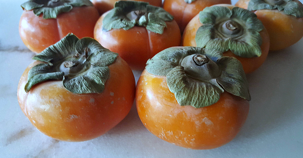feature persimmons
