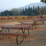 Fortino Winery on the Santa Clara Wine Trail