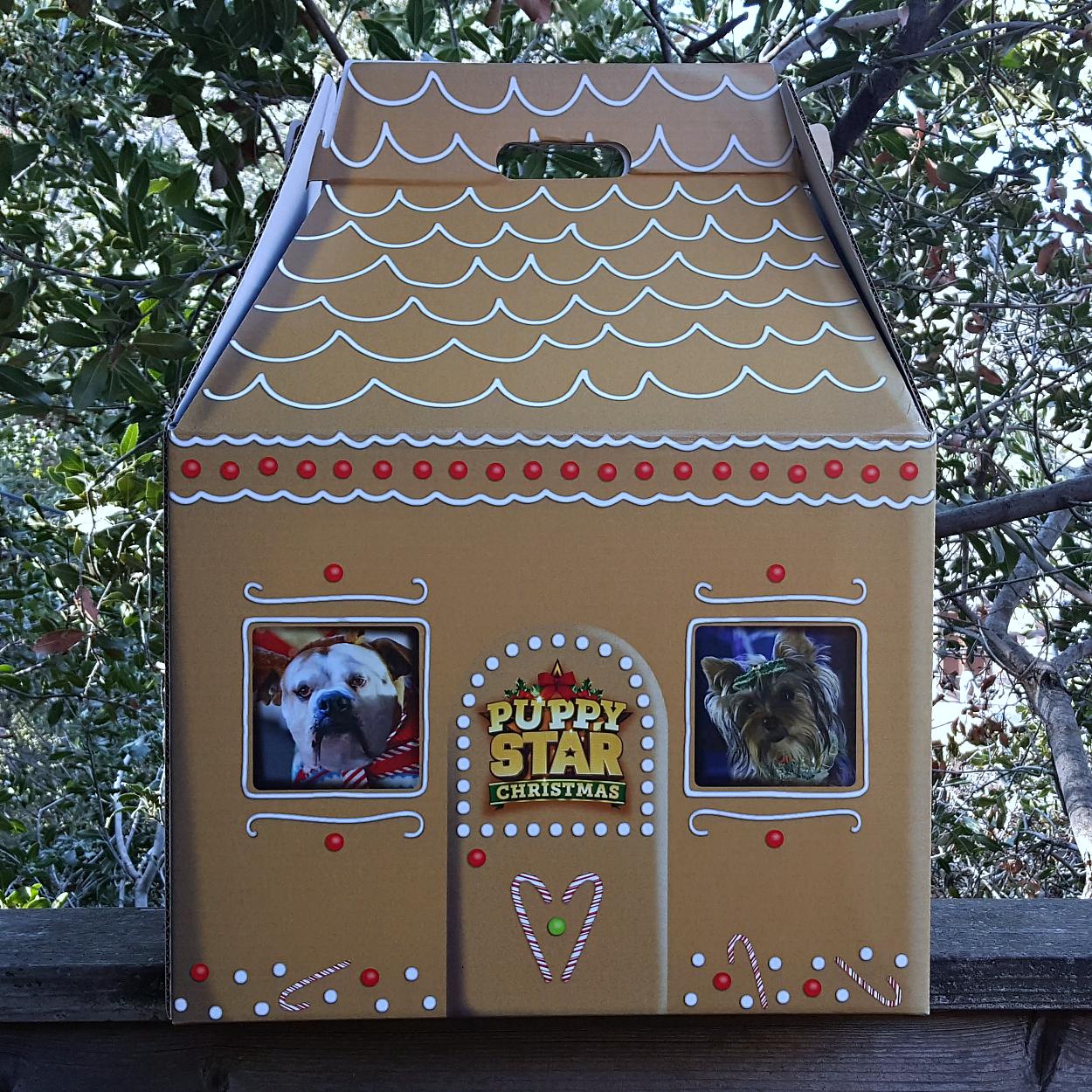 puppy star christmas box