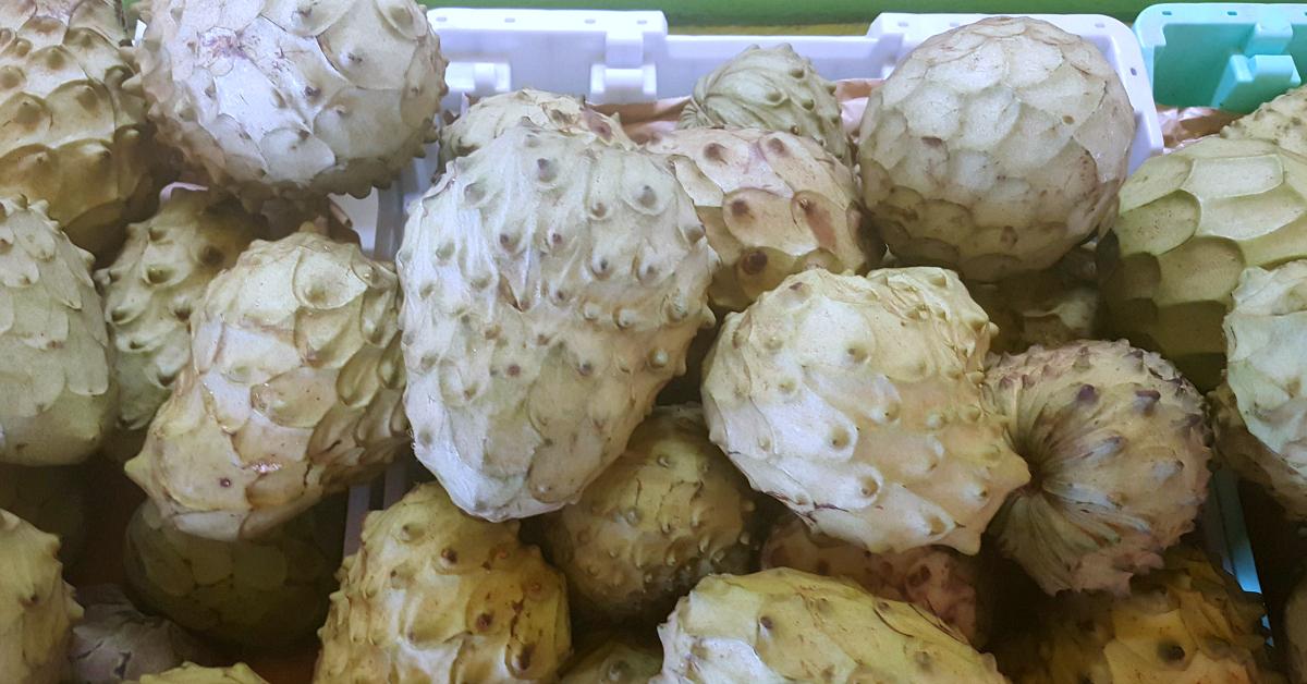 santiagos fruit stand cherimoya