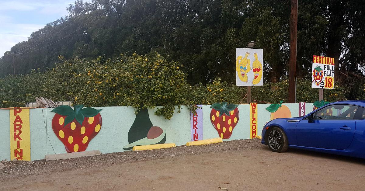 santiagos fruit stand parking