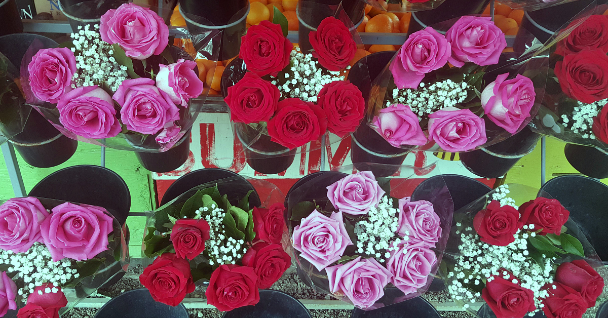 santiagos fruit stand roses