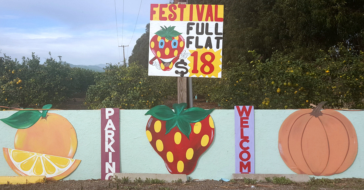 santiagos fruit stand signs