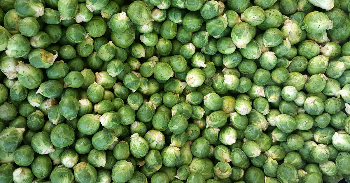 solvang farmers market brussels sprouts