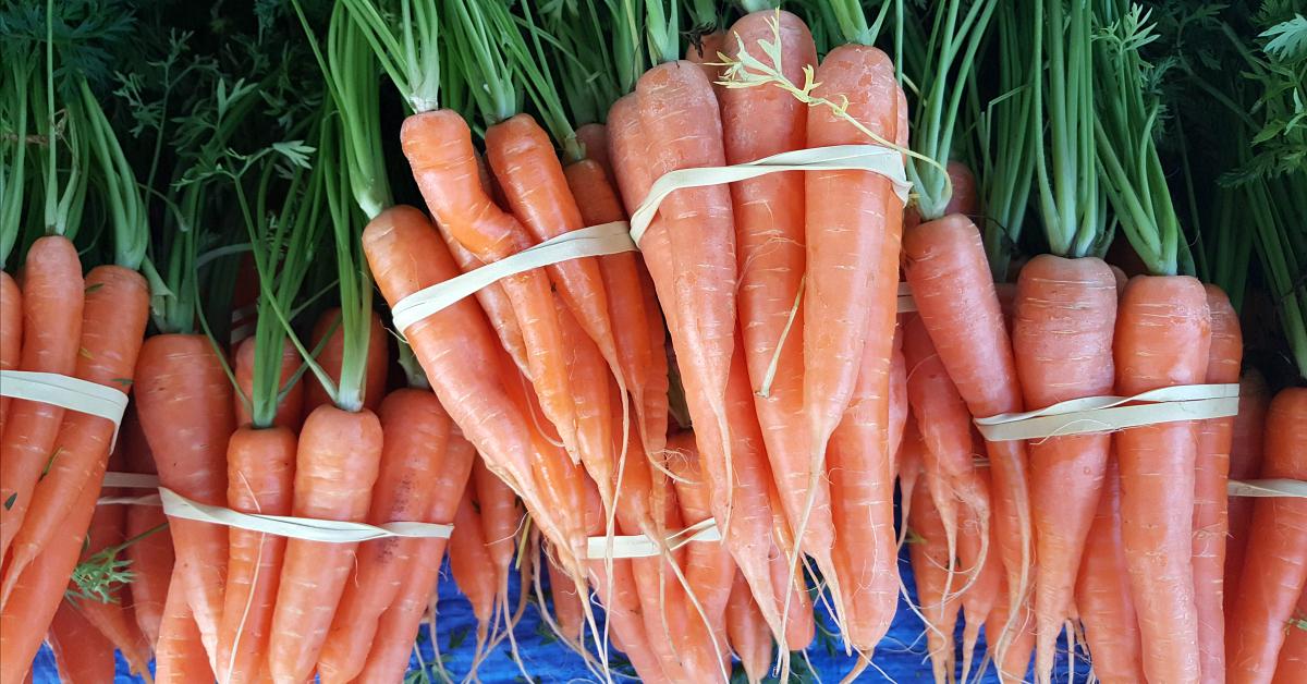 solvang farmers market carrots
