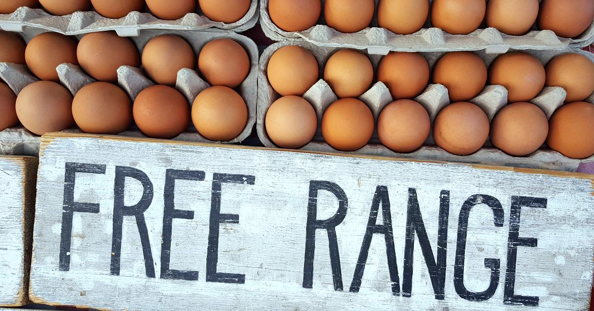 solvang farmers market eggs
