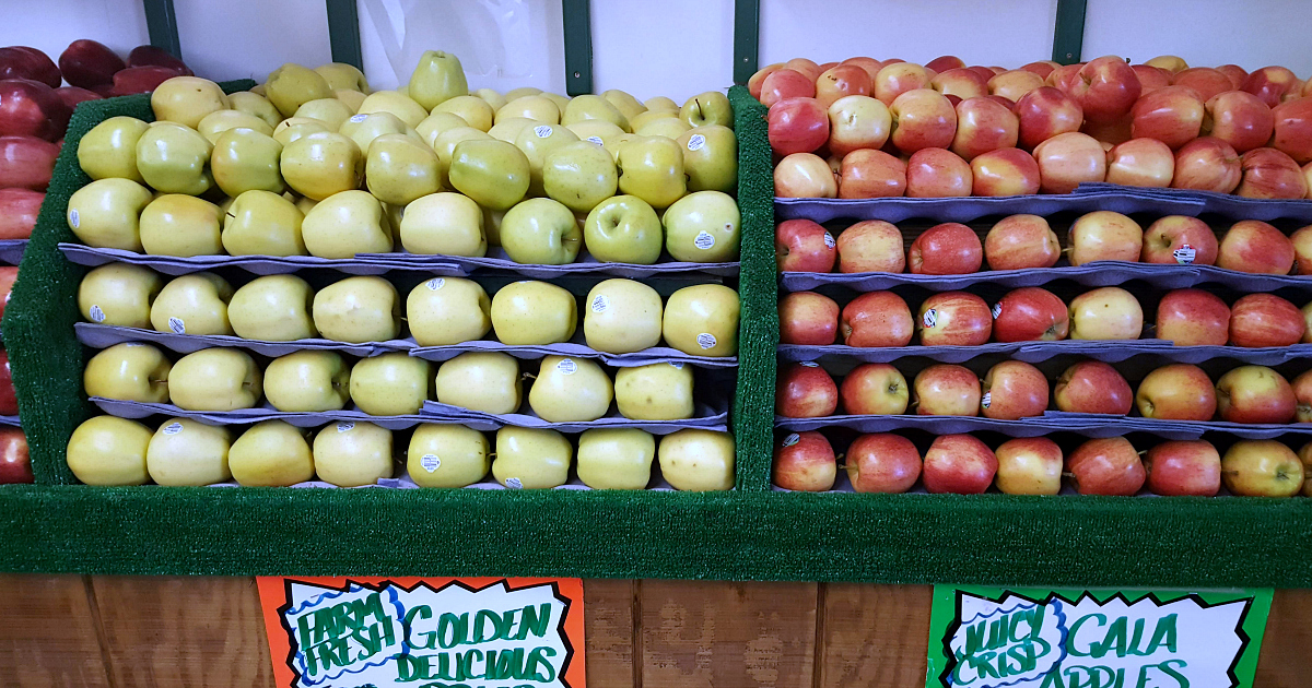 dowling farm stand apples