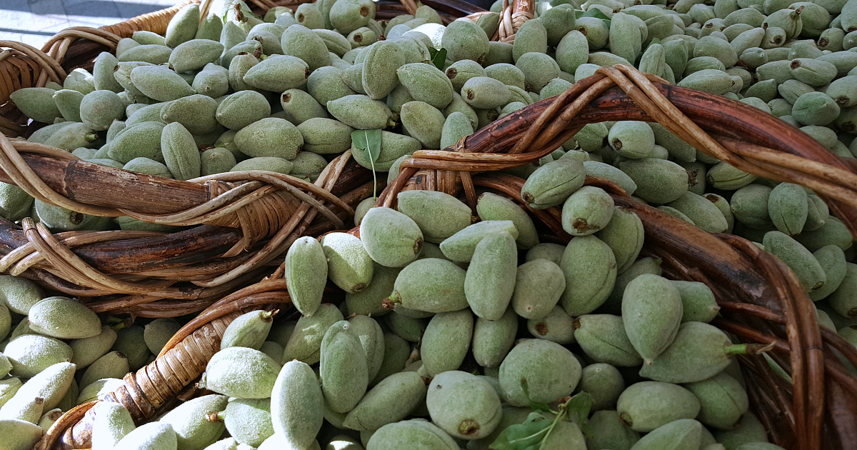lancaster green almonds