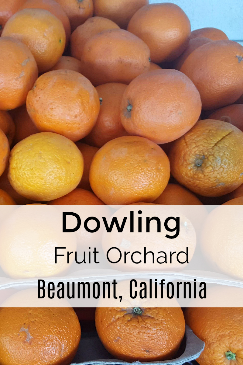 Dowling Fruit Orchard - Beaumont Farm Stand on Highway 60 in the Southern California Desert