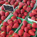 A Dozen Tasty Strawberry Cocktail Recipes