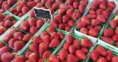 fresh strawberries at california farmers market