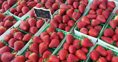 fresh strawberries at california farmers market
