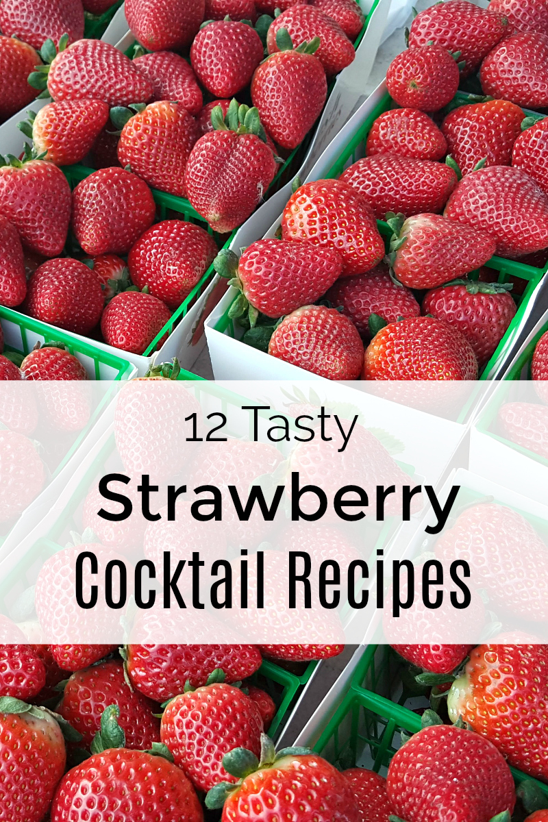 pin 12 tasty strawberry cocktail recipes