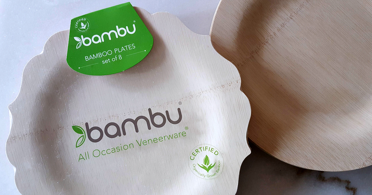 set of bambu picnic plates