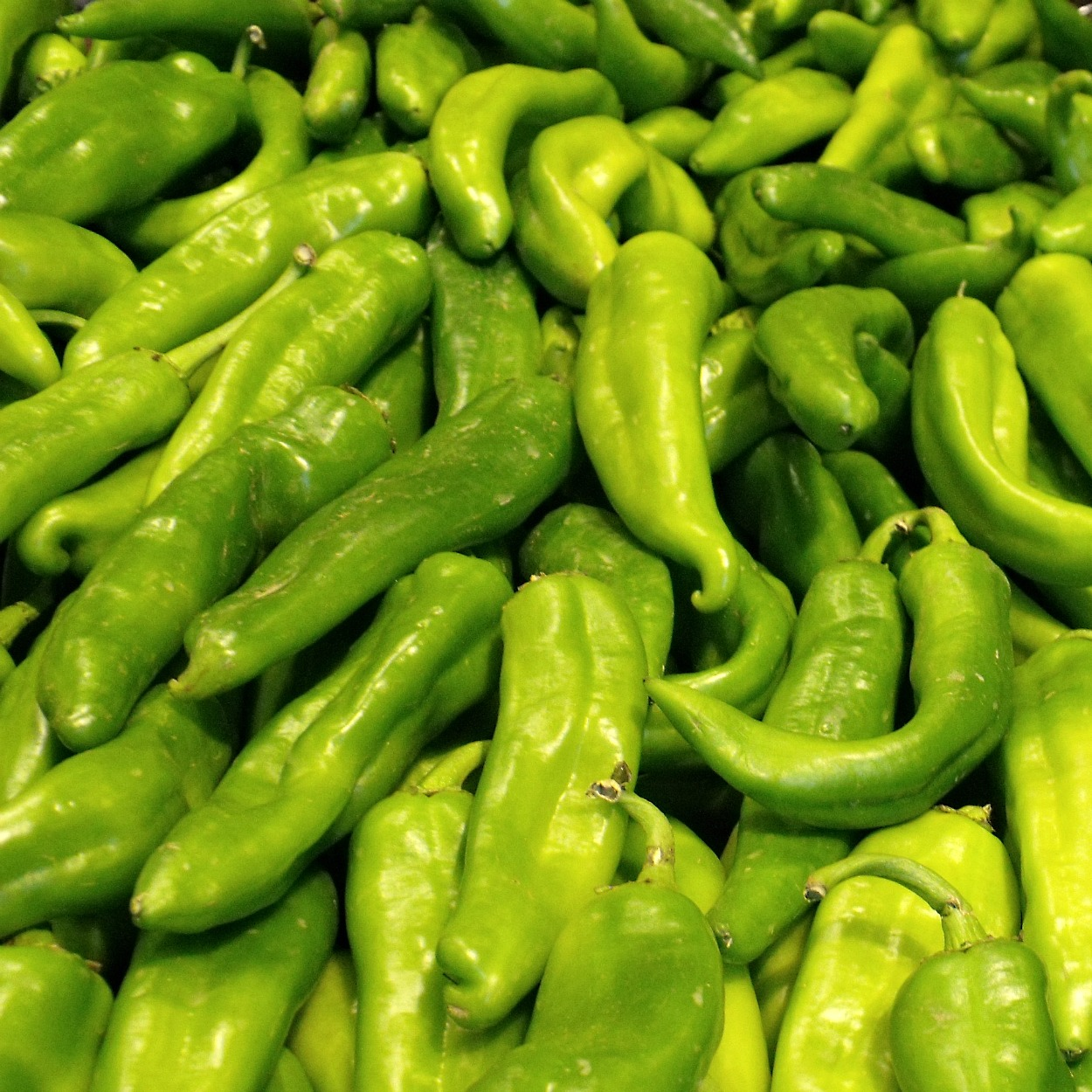 insta hatch chile peppers