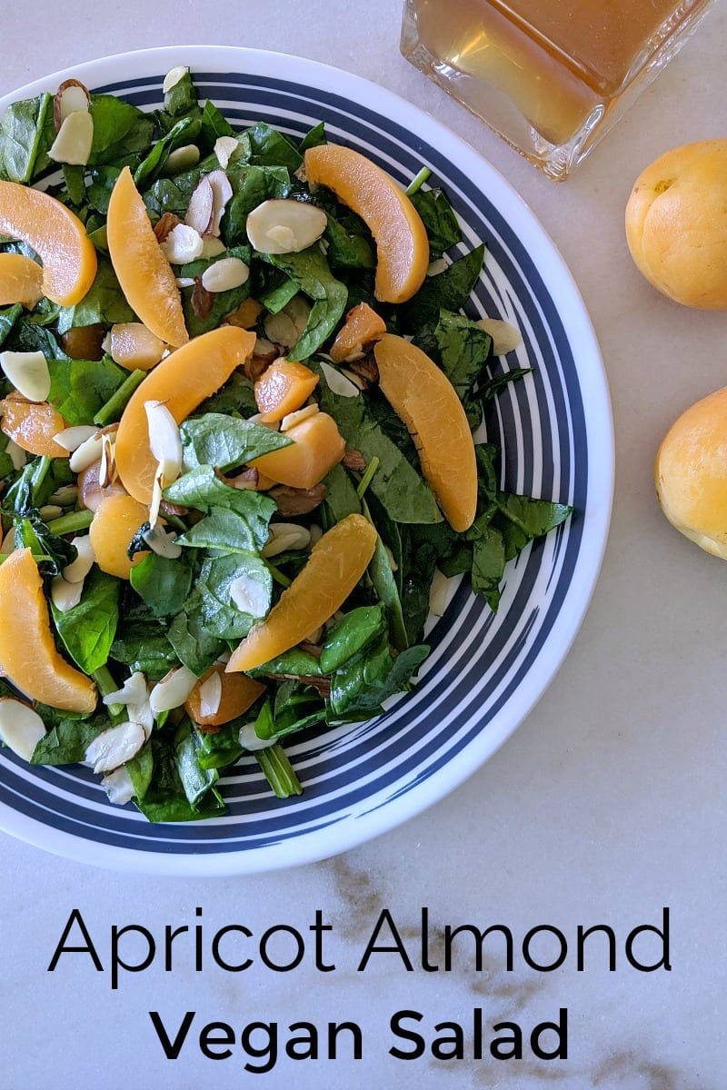Vegan Apricot Almond Salad Recipe #salad #vegan #apricot #apricots #almond #almonds #vegetarian #fruit #fruitsalad #spinachsalad #apricotsalad