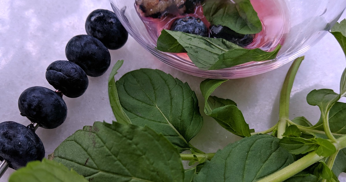 making a blueberry tonic
