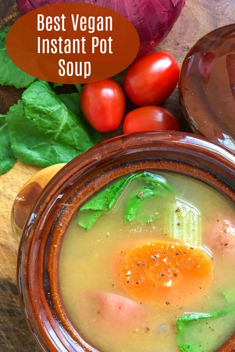 pin vegetable instant pot soup