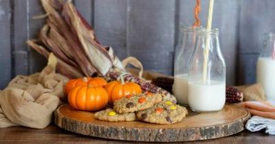 thanksgiving cookie display