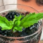 Sparkling Blackberry Basil Mocktail Recipe