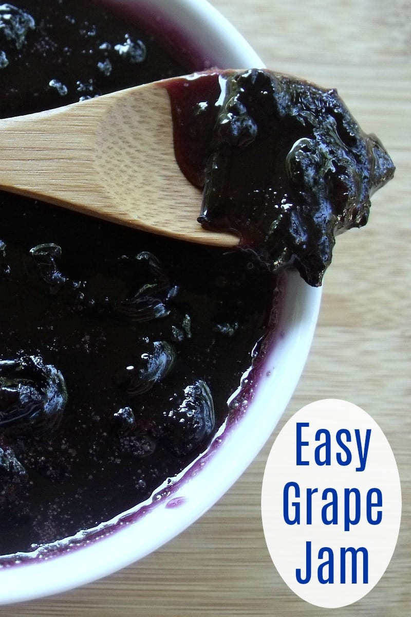 pin dish of grape jam with bamboo spoon