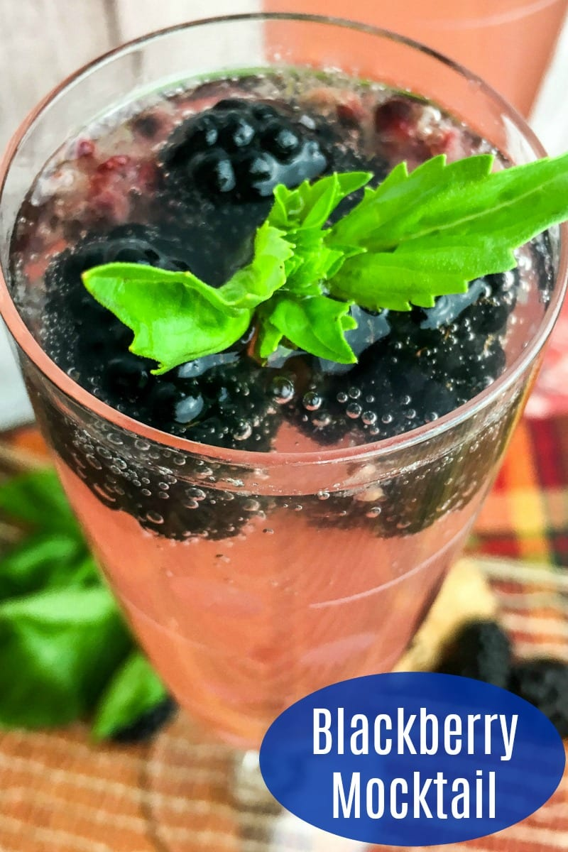 Sparkling Blackberry Basil Mocktail Recipe #Mocktail #VirginDrink #VirginCocktail #Blackberries #Recipe #DrinkRecipe #MocktailRecipe