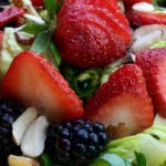 Berry Salad with Homemade Raspberry Vinaigrette