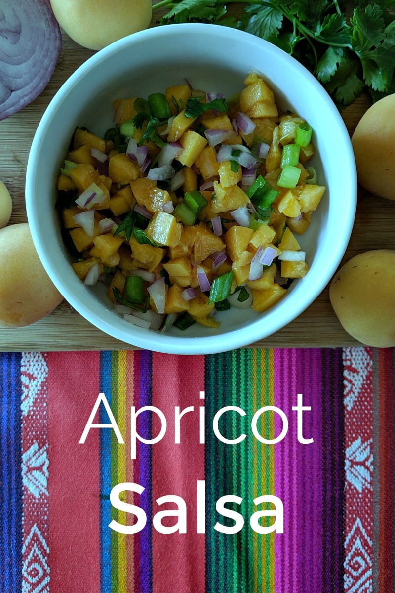 Yummy Fresh Apricot Salsa Recipe #Salsa #FruitSalsa #Apricot #Apricots #ApricotSalsa #Recipe #Vegan #Vegetarian #TacoTuesday