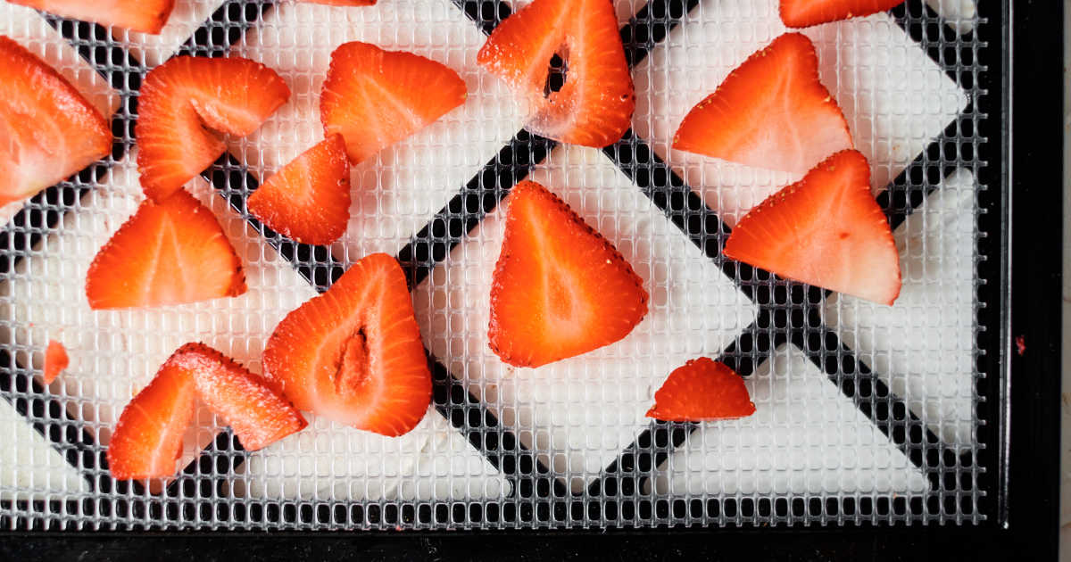 sliced strawberries on drying rack